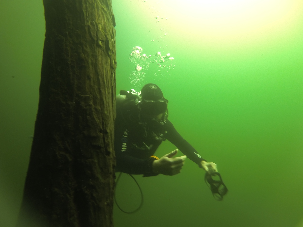 How does cavern guide dive instructor sound for a job - Dive instructor jobs ...